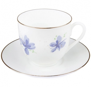 Lomonosov Imperial Porcelain Bone China Coffee Cup and Saucer Violet Flowers