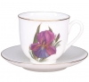Lomonosov Imperial Porcelain Bone China Cup and Saucer Iris Flower