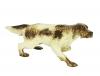 Setter Spotted Dog Lomonosov Porcelain Figurine