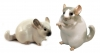 Chinchilla Sweet Family Lomonosov Porcelain Figurine 2 items Set