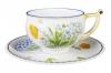 Imperial Lomonosov Porcelain Tea Set Cup and Saucer Kostroma Calendula 10 oz/300 ml