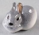 Rabbit Image #1