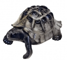 Turtle Figurine Dark Lomonosov Imperial Porcelain